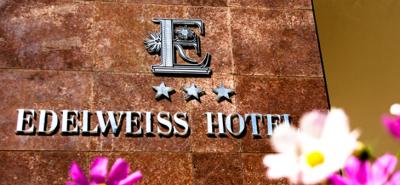 Эдэльвайс зочид буудал / Edelweiss Hotel