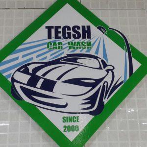 Тэгш авто угаалга / Tegsh car wash
