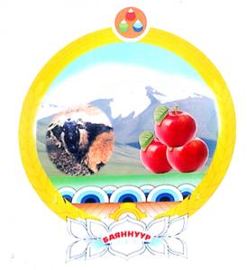 Баян-Өлгий аймгийн Баяннуур сумын дунд сургууль