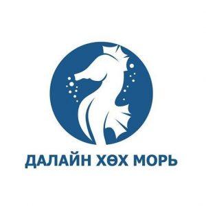 Пони тур / Pony tour