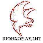 Шонхор үнэлгээ аудит ХХК / Shonkhor unelgee audit LLC